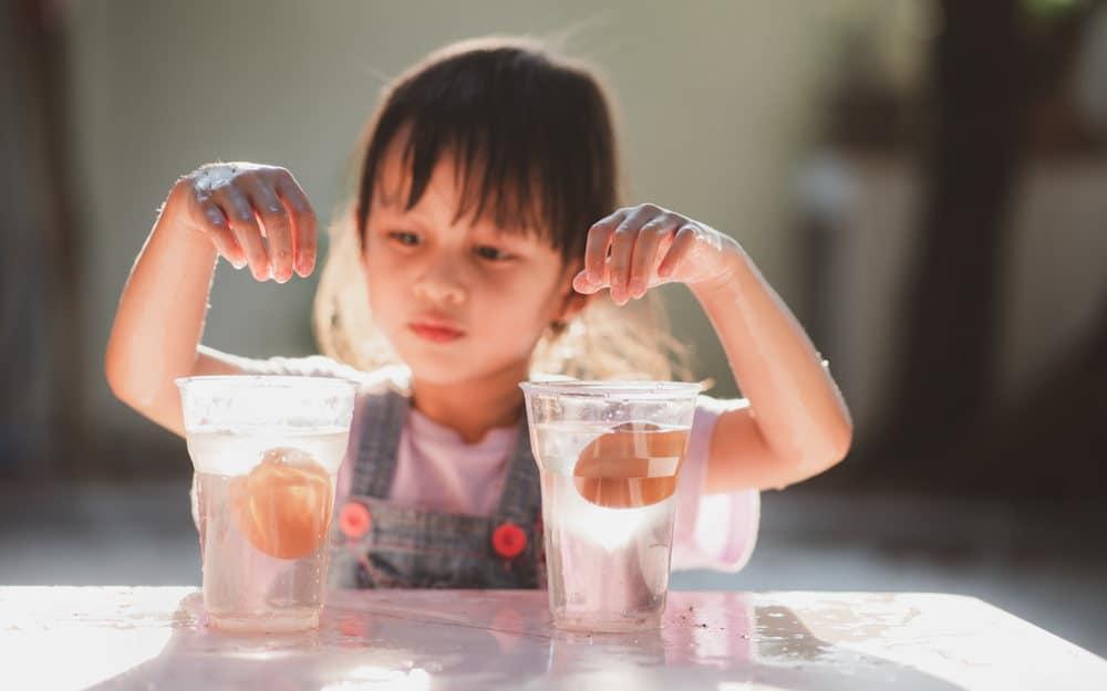 STEM Oriented Activities for Kids